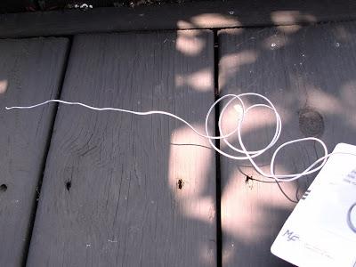 guest_craft_wire_1.jpg