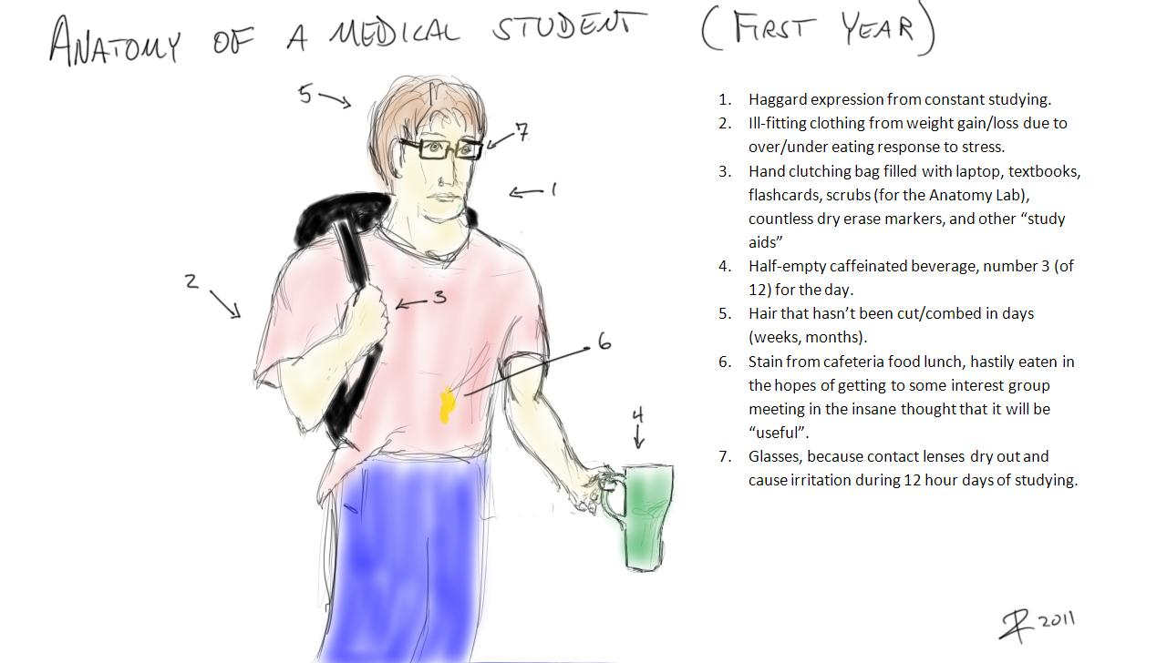 Indeterminate Causality: Anatomy of a Medical Student (First Year)