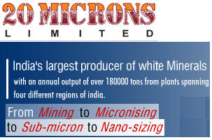 20 Microns IPO
