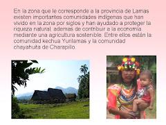 NUESTRAS COMUNIDADES NATIVAS MUEREN DE CONTAMINACIÓN