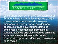 ÚNETE A LA CRUZADA POR SALVAR NUESTRA AMAZONÍA Y EL PLANETA