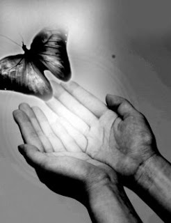 Innovation - butterfly leaps from hands.  Image borrowed from nextup