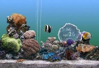 Marine acuario