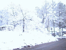 Thars SNOW in dem thar hills.
