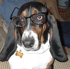 professor turbo