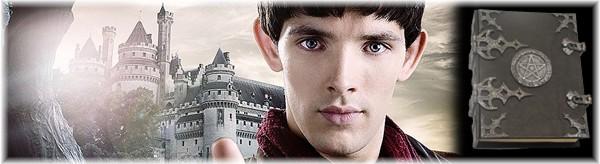 #Merlin Library*