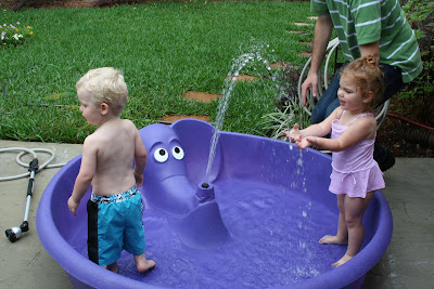 Thethomsoncrew Purple Elephant Pool