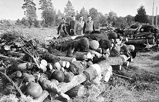 Soviet+Union194145-Victims.