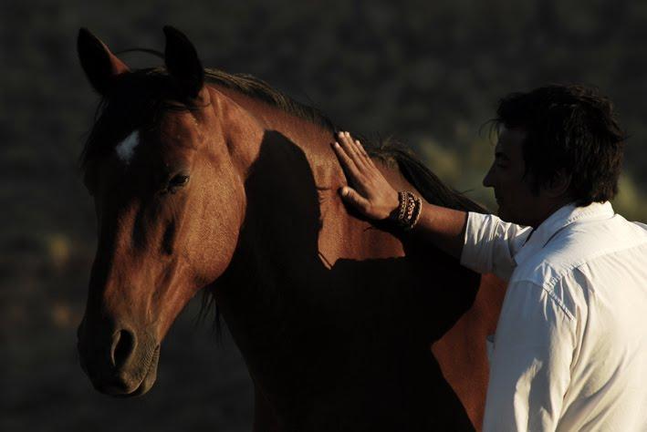 NATURAL HORSE WAY