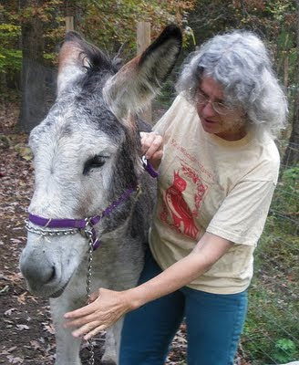 my donkey and me