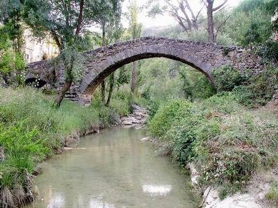 [puente.bmp]