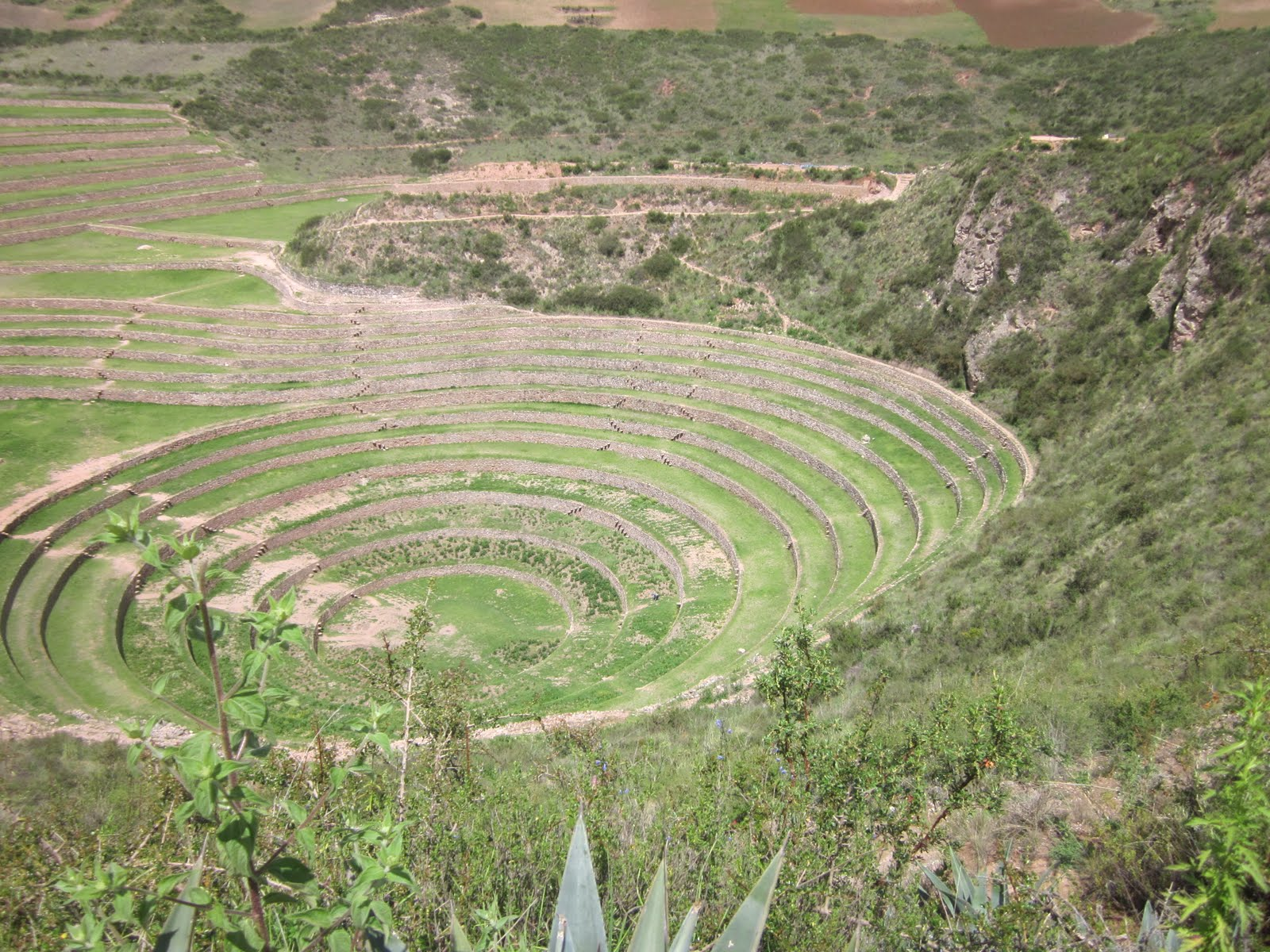 circular terraces of the Moray