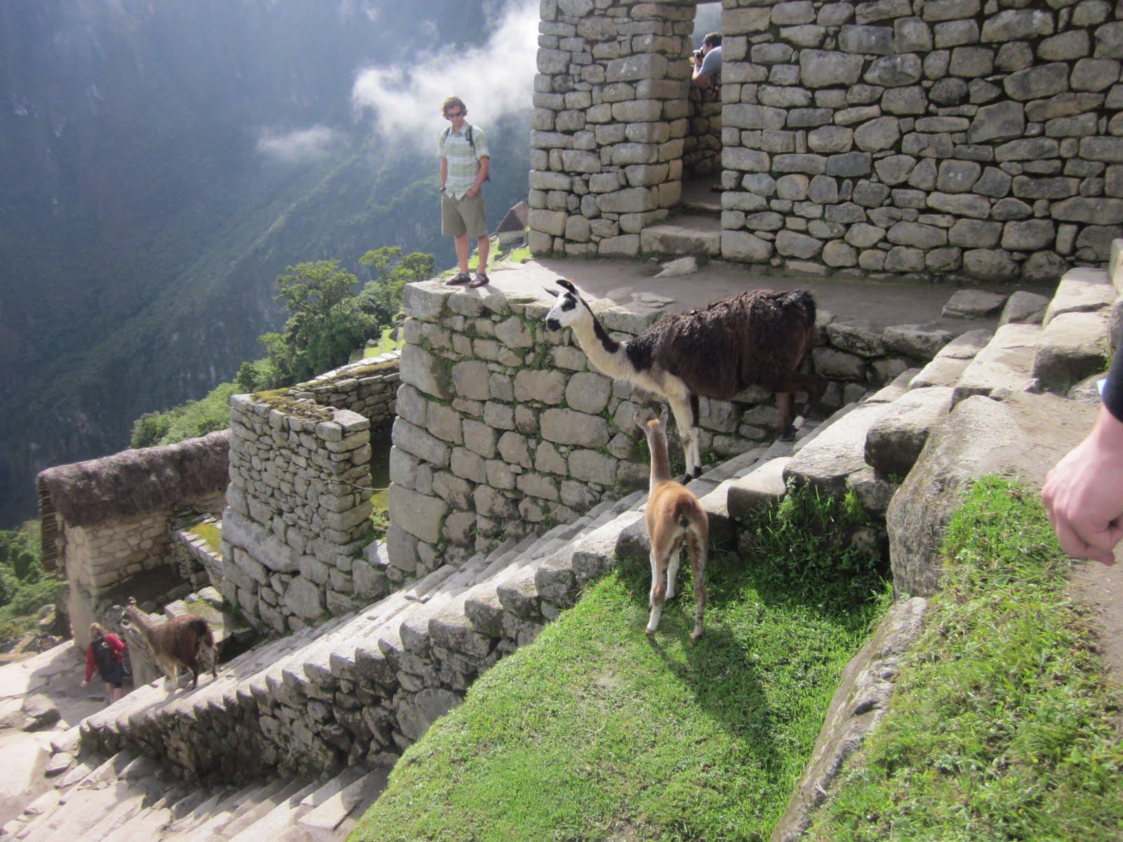 touring ruins