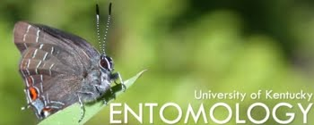 University of Kentucky ENTOMOLOGY