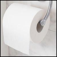 'Paper Toilet