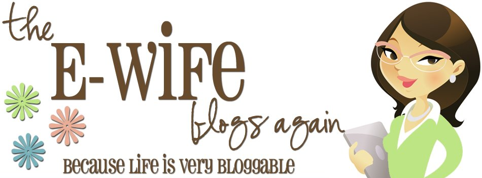 The E-Wife Blogs Again