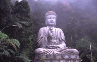 BUDHA DHAMMA