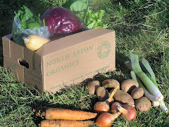 A typical winter veg box