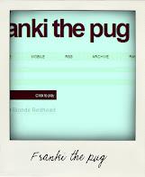 Franki the pug