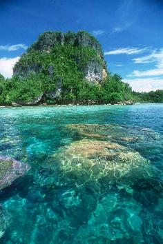 Karang di Kepulauan Pef di Kabupaten Raja Ampat, Sorong - Papua Barat