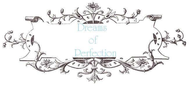 Dreams Of Perfection