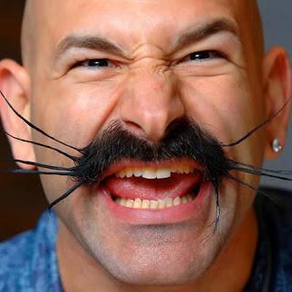 world beard and moustache championships brighton