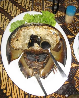 Horseshoe Crab Roe; Nast, eaten in China