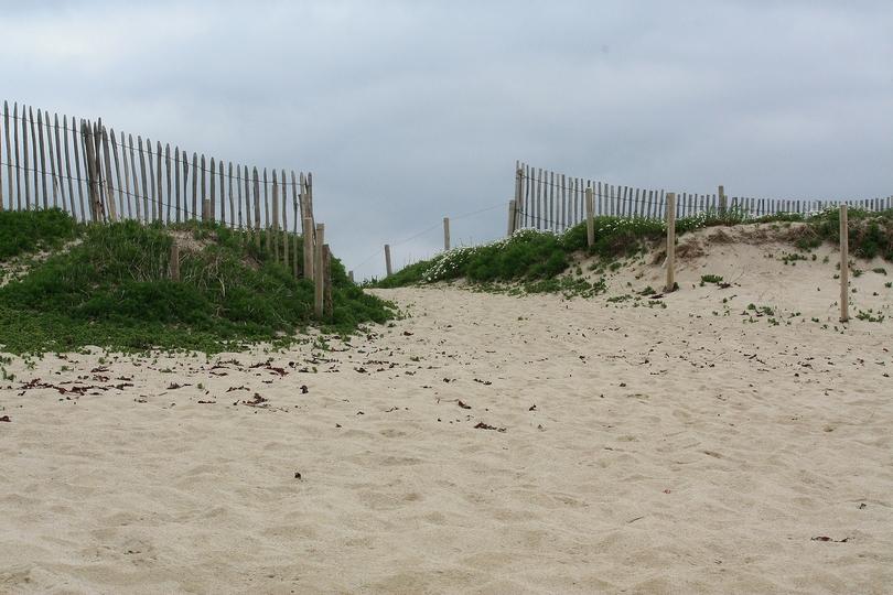 Dune de Trévignon.