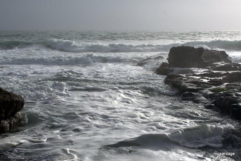 Écume de mer.