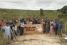 Palm oil kills - no doubt about it.