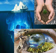 EcoAhorro sostenible y Rentable, lee