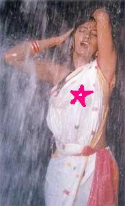 cheesy, hot, indian, priyanka chopra. madakini, saree, sexy, sridevi, tight, ugly, wardrobe malfunction, water, wet, wet saree, http://polkastripeszebradots.blogspot.com/