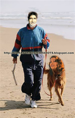 abhishek bachchan, abhiwarya, aishwarya rai, amitabh bachchan, dhoom 2, dogs, first look, fugly, funny, pictures, poster, sneak preview, wedding, woof, http://polkastripeszebradots.blogspot.com/