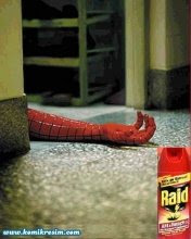 Raid y chau Spiderman...