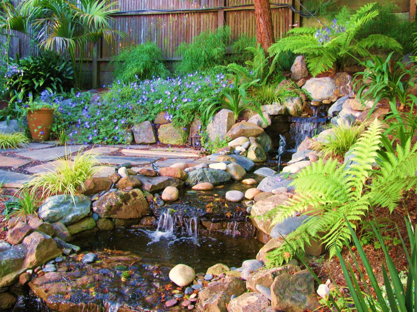 Hillside Garden Designs : Liquidambar garden design