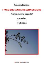 I passi sul sentiero sconosciuto (Verso marine sponde) II Edizione - Poesia