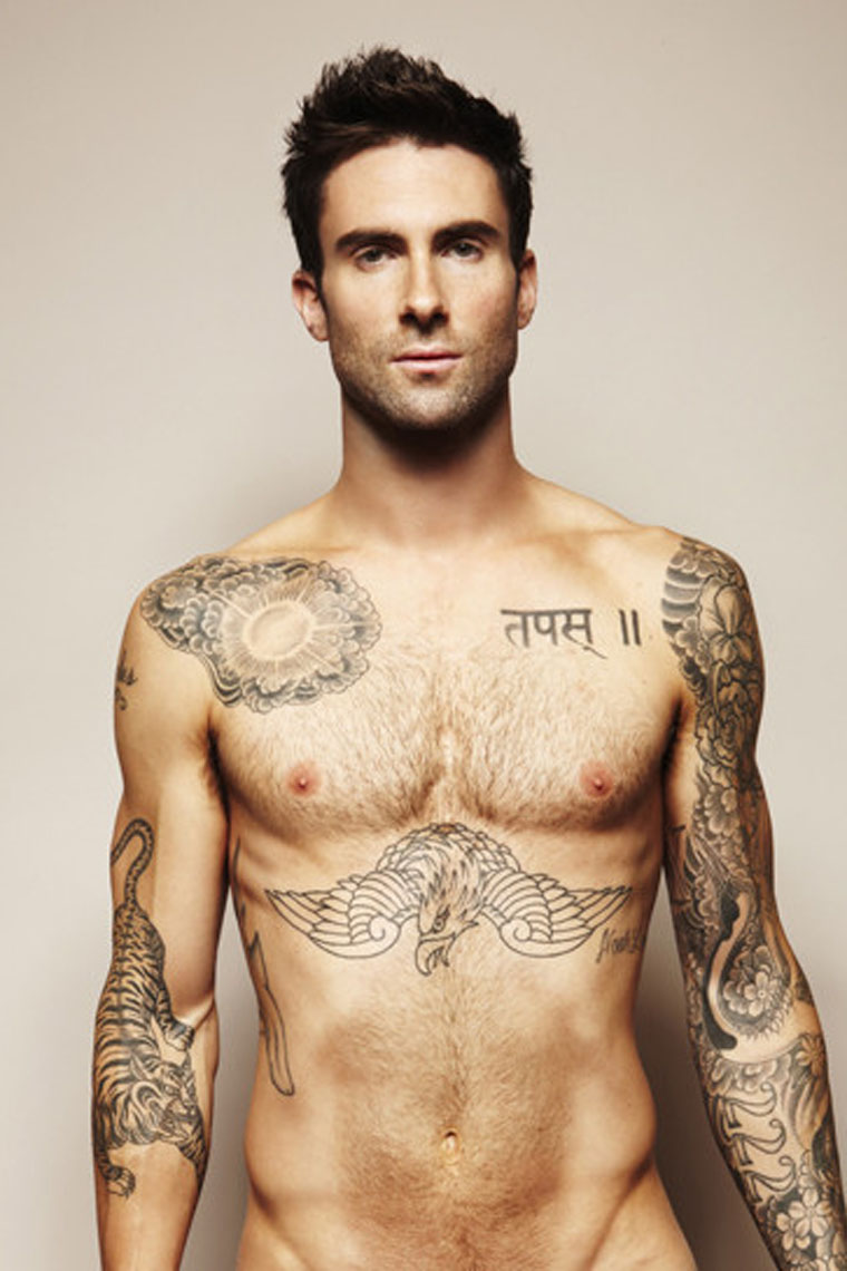 Celebrity Sexy Show Adam Levine Pictures For Fights