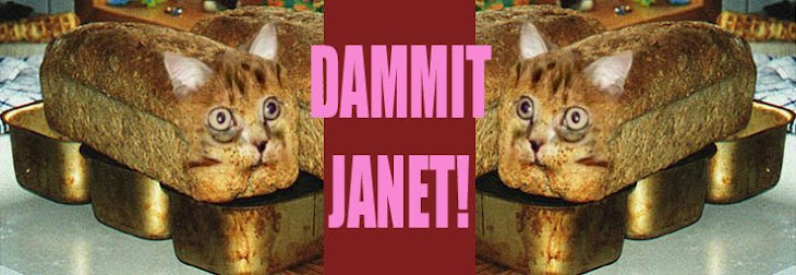 DAMMIT   JANET!