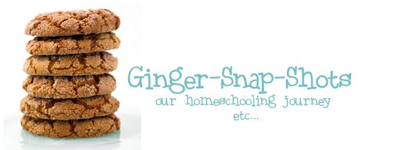 Ginger snap shots