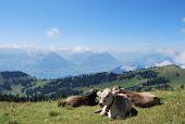 Mt. Rigi, Switzerland