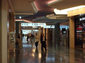 羽田新国際線ターミナル/制限区域内