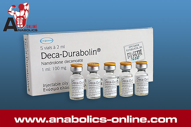nandrolone decanoate injection ip 50 mg