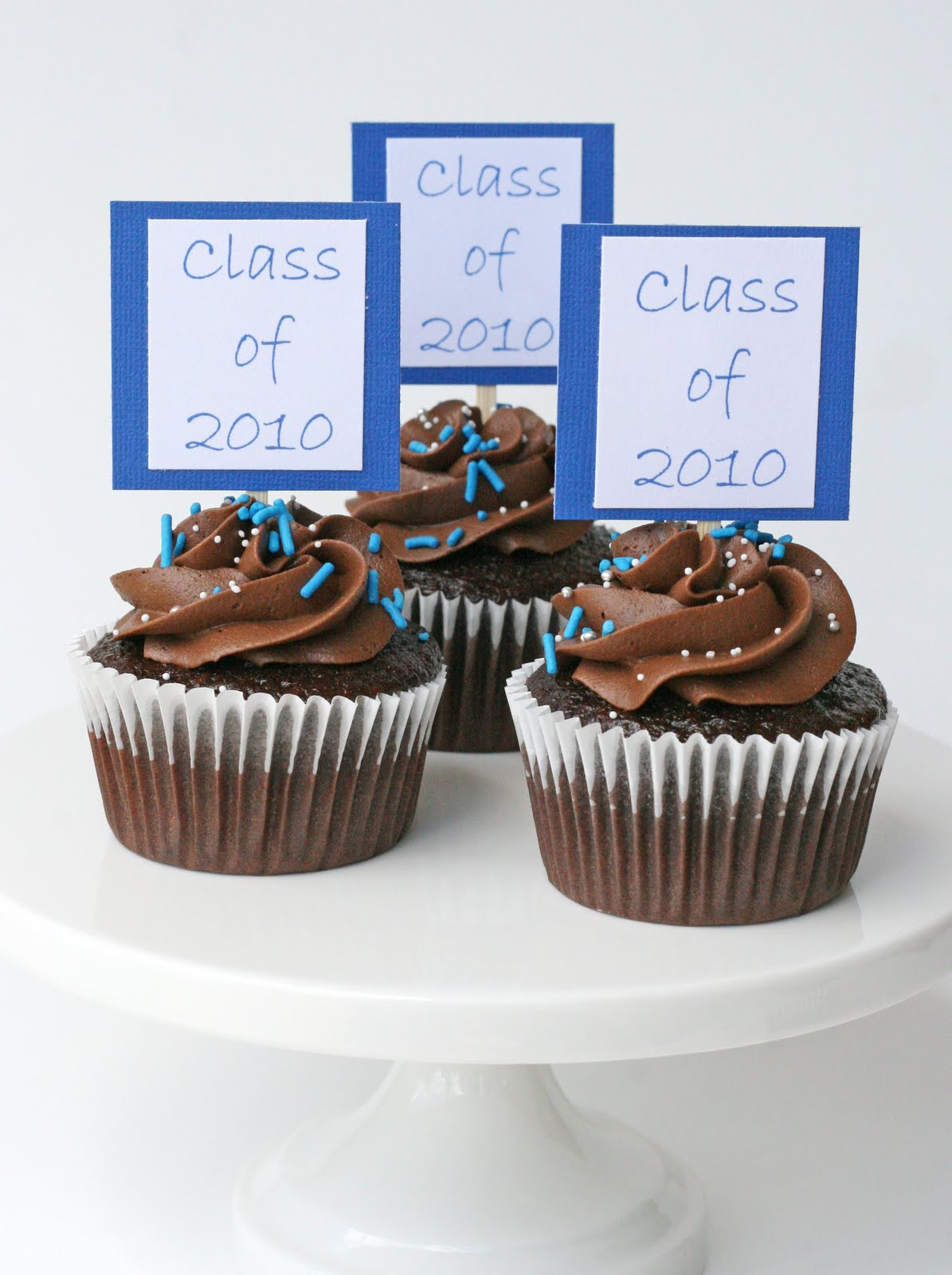 Graduation cupcakes with do it yourself toppers glorious treats graduation cupcakes with do it yourself toppers solutioingenieria Gallery