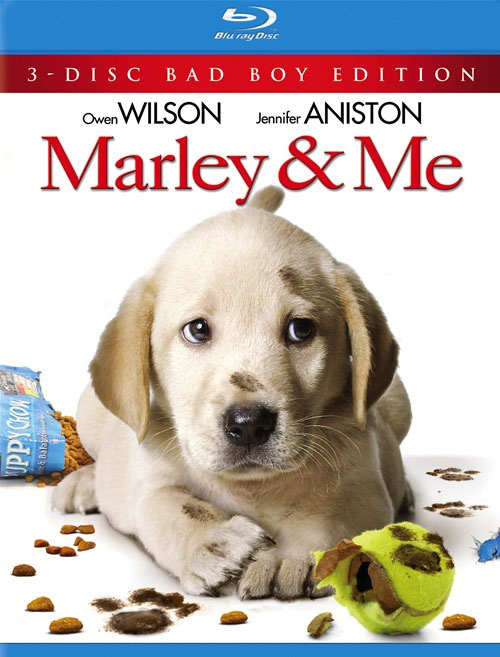marley and me book. Marley and Me: BOOK VS. MOVIE
