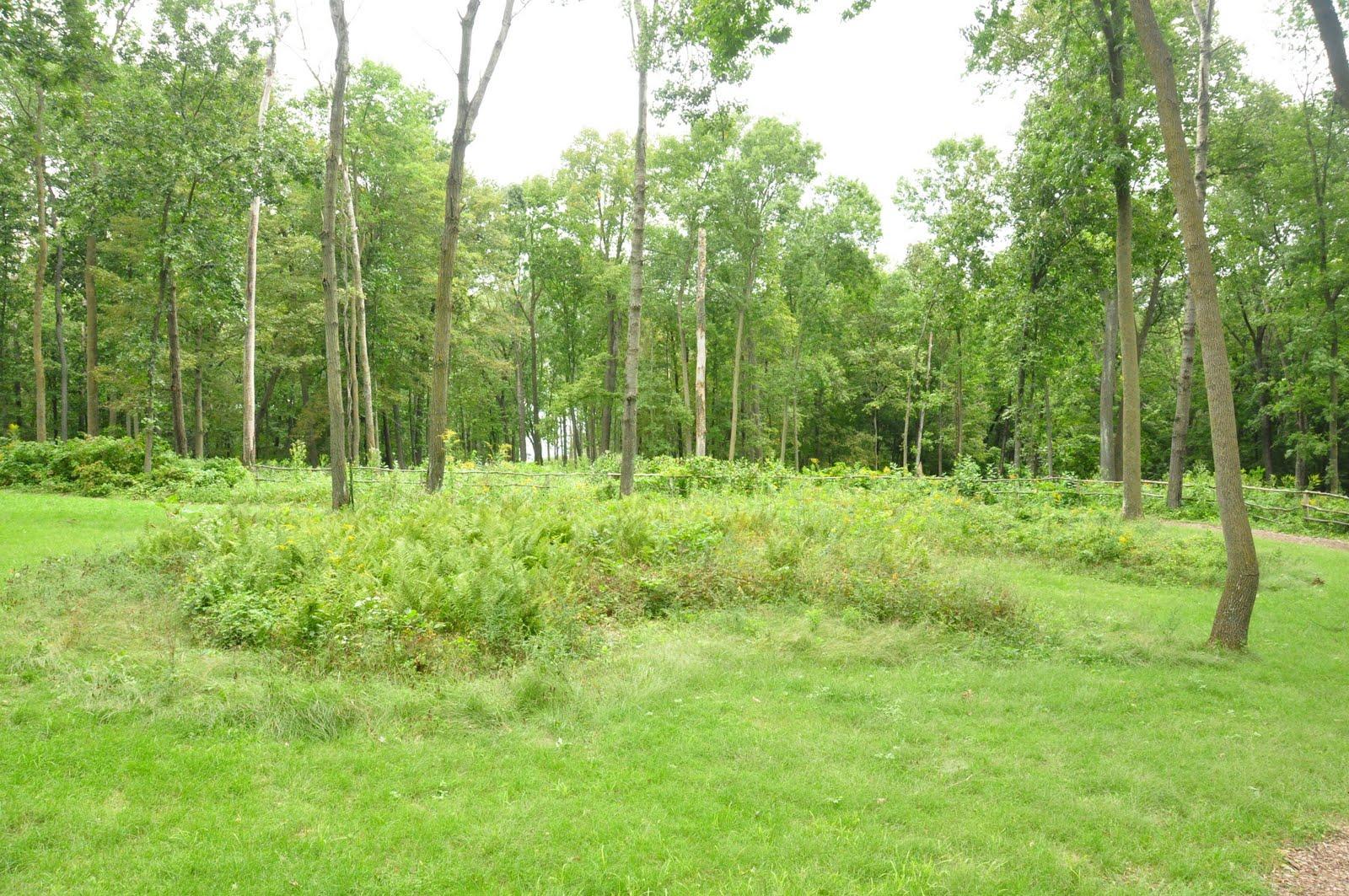 Effigy Mounds. Palapala 2015 Sinhala Dhanu Lagna. View Original ...