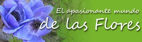EL APASIONANTE MUNDO DE LAS FLORES