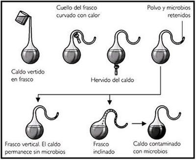 la teora de evolucin qumica teoria de la evolucon quimica