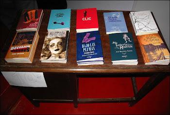 Coleccion de Poemario hecho en Lavapies(Editorial Amargord)