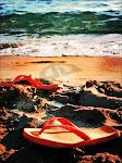 sea+sun=summer