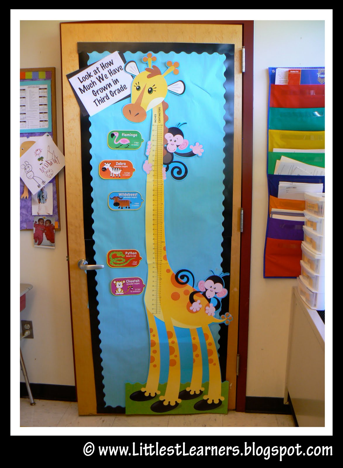 Jungle Theme Classroom Sayings http://clutterfreeclassroom.blogspot.com/2011/06/jungle-safari-themed-classrooms.html